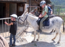 Juillet 2016 - Ballade avec les ânes