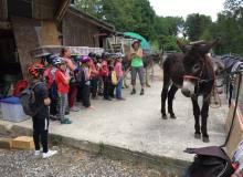 Juillet 2018 - Ballade avec les ânes